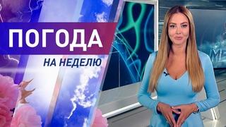 Погода на неделю с 21 по 27 июня 2021. Прогноз погоды. Беларусь   Метеогид