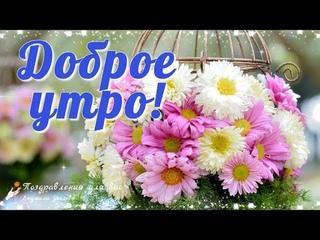 🌸☕️ Доброе утро! Пускай Любовь согреет Душу, пусть сбудутся заветные Мечты!