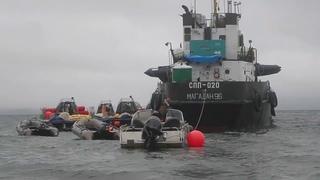 Отлов косаток в Охотском Море 2018/ Orca's capture in Okhotsk sea 2018