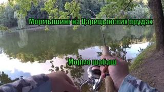 Мормышинг в Царицыно / Мормо шабаш / Злые окуни Московских прудов