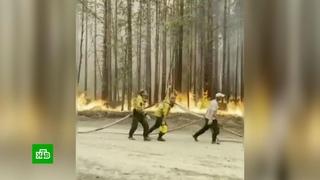 Население охваченных пожарами районов Карелии эвакуировано