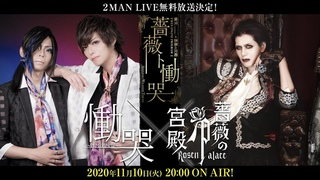 慟哭~doukoku~ × 薔薇の宮殿 2MAN FREE LIVE PROGRAM『薔薇ト慟哭(Bara to Doukoku』