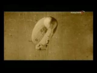Золотой Дирижабль исполняет Алексей Могилевский