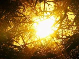 Гимн солнцу.wmv