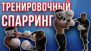 Тренировочный спарринг. Подготовка к турнирам по ММА в BFC и ACA. Калининград / Дневник ММА