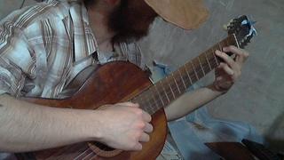 Cuises Dachshund Argentina en Directo Guitarra
