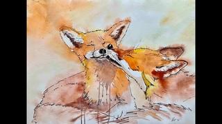 Watercolor painting foxes. Акварельный рисунок лисы
