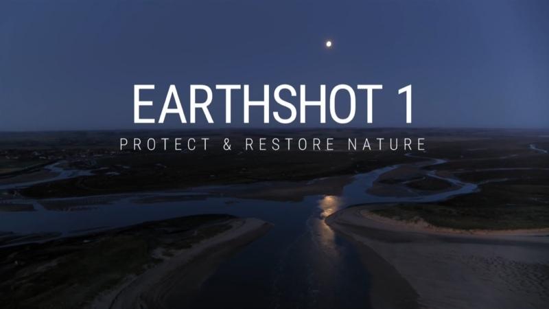Protect Restore Nature