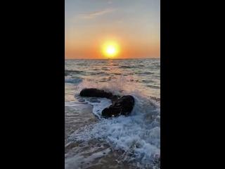 Video by Viatcheslav Iniuchkin
