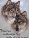 Личный фотоальбом Сірия Волка