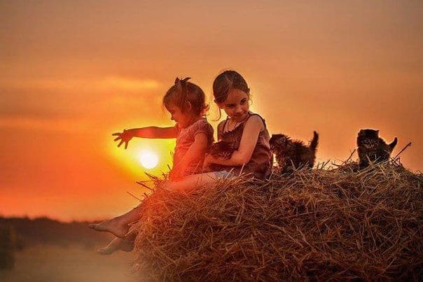 Если у тебя в течение дня была счастливая минута, вызванная чем угодно, значит, тебе выпал хороший день Пускай это будет улыбка незнакомого человека, или минутная нежность к матери или к отцу,