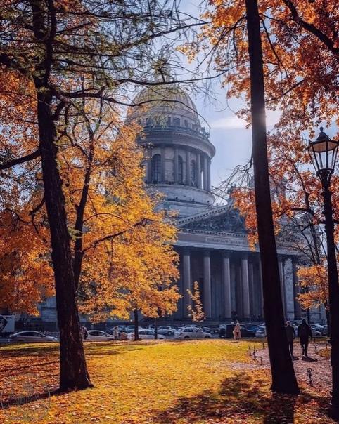 Осень в Александровском саду 🍂🍁🔥  📷andrei_mikhailo...