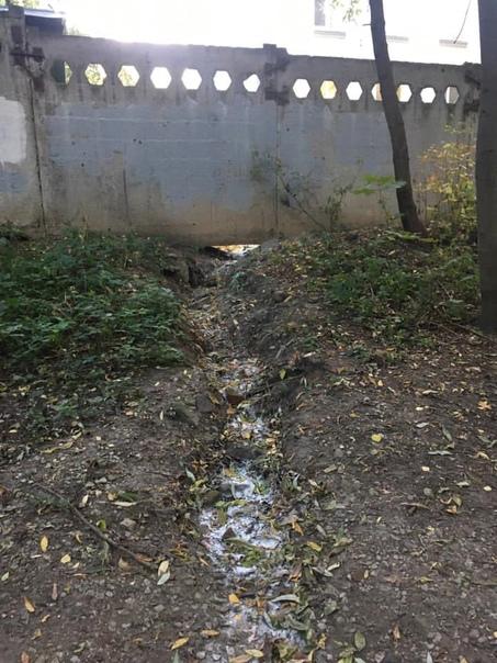 Местные жители Тимирязевского района гадают, что же перио...