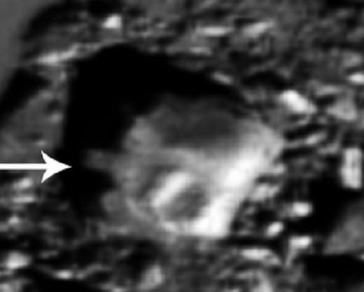 Луна - творение инопланетного разума, изображение №5