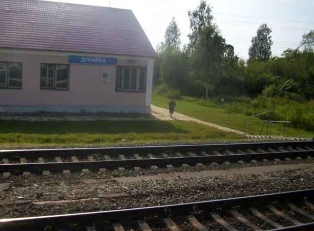 В районе ярославской жд станции Дунайка мужчина попал под поезд