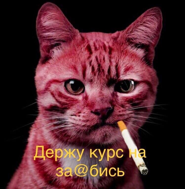 Александр, 41, Penza