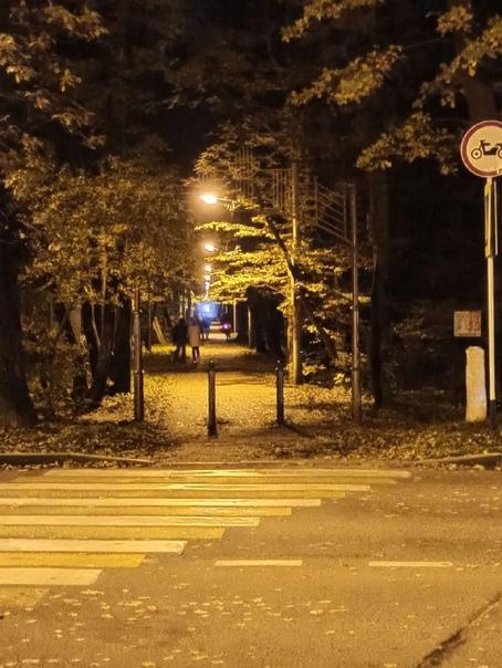 На Тропе здоровья в Ставрополе восстановили освещение  Не так давно на Тропе здоровья в Таманском лесу... Ставрополь