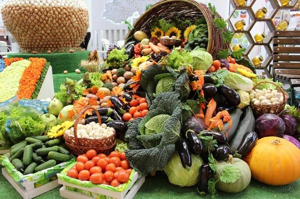 В городе Бологое пройдет осенняя сельскохозяйствен...