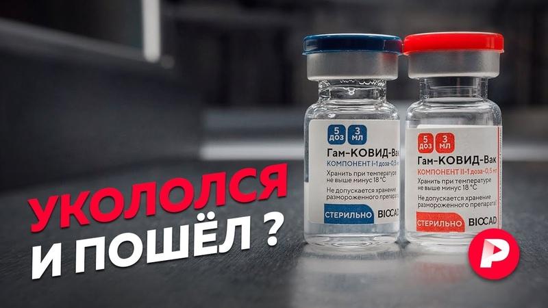 Неудобные вопросы о всеобщей вакцинации Редакция