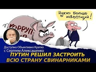 Путин решил застроить всю страну свинарниками / актуальные события / россия экономический рост